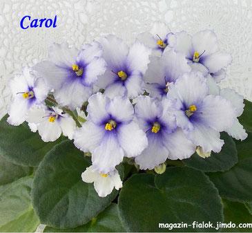 Carol (E.Fisher)