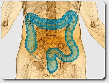 Гидроколонотерапия - это глубокое очищение толстого кишечника
