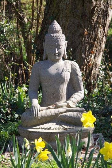 """""""Pour la réalisation de la Vérité, il y a à s'accepter soi-même"""" Swami Prajnanpad"""