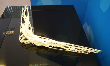 3D printed wing structure resembling the skeleton of birds  /  source: Julian Caanitz