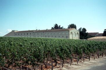 Paulliac, Château Mouton Rothschild