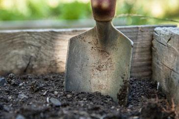Gemeinsames Gärtnern schafft Integration