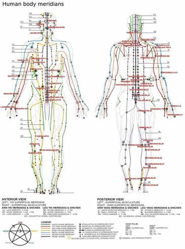 Meridiane, TCM, Penzel, Akupunktmassage