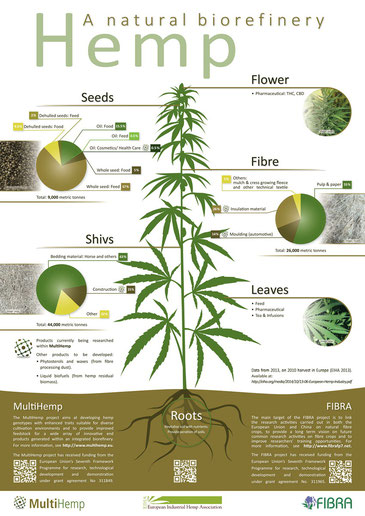 Hemp has countless use cases. Click to show large image. Source: www.multihemp.eu