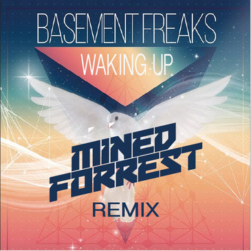 Basement Freaks feat. Sherly - Waking Up (Mined & Forrest remix)