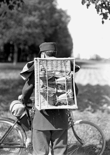 Patrouillenkorb mit Brieftauben in der Detailansicht 1. Weltkrieg
