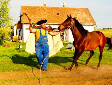 Schafhirte vor Hortobagy in der unganrischen Puszta