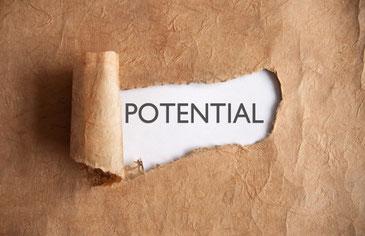 Potenzialentwicklung und Persönlichkeitsentfaltung