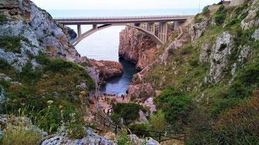 Blick vom oberen grün bewachsenen Teil der Schlucht auf die Bogenbrücke von Ciolo, darunter sieht man den Canale di Ciolo