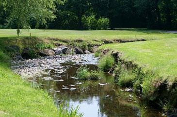 kleiner idyllischer Bach inmitten eines Greens am ©Cardiff Golf Club