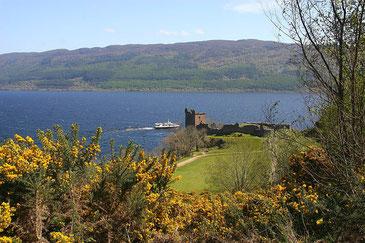 Die Burgruine von Urquhart Castle am Loch Ness