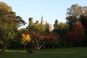 Cardiff Castle vom Bute Park aus mit herbstlich gefärbten Bäumen und einer grünen Rasenfläche im Vordergrund