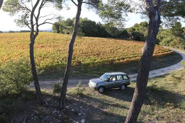 Unterwgs mit dem Landrover in den Weinbergen von Baulieu