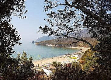 Blick durch die Bäume auf die Bucht mit Strandstrand und Küste an der Serra da Arrabida