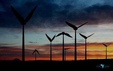 風車のイメージを大きく変えるTYER WINDの風車