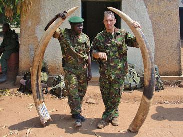 密猟者から没収された象牙 こうして多くの動物の命が奪われている ENOUGH Project CC BY-NC-ND 2.0