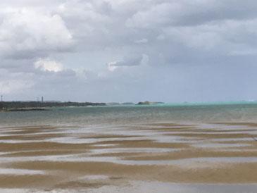 辺野古を見渡す美ら海 人間のエゴを飲みこむのもそろそろ限界...