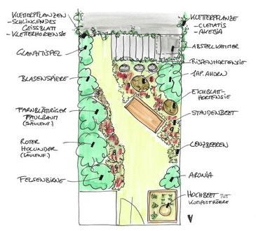 Naturgarten skizze