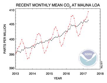 マウナロア観測所による二酸化炭素測定値。赤が実測値。黒が環境による変化を取り除いた値だ。確実に右肩上がりだ。