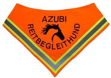 Reitbegleithund, Azubi, Reiter, Halstuch, Hundehalstuch