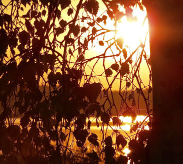 Sonnenuntergang, Neustrelitz, MV, am See