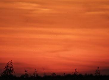 Sonnenuntergang, Urlaub, MV, Mecklenburg