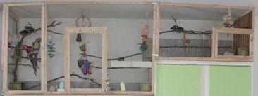 Liberté dans une pièce de 25 m² (cage ouverte et aires de jeux)