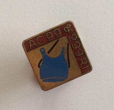 Insigne de boutonnière de l'Amicale représentant une gourde de soldat (Coll. priv. 001)