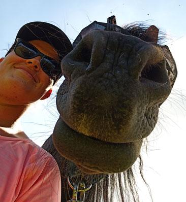 Friesenstute Ella und Ich im Selbstporträt von unten