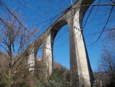 Castanea Società Cooperativa, Escursionismo, Trekking, Guide escursionistiche