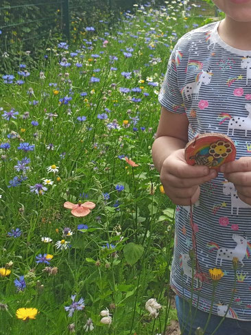 Auf diese Blumenwiese können die Kinder stolz sein. Foto: Daniele Finocchiaro