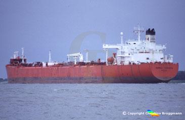 Öl-u. Shuttletanker NORDIC TORINITA