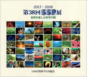 2017-2018 第38回SSP展図録