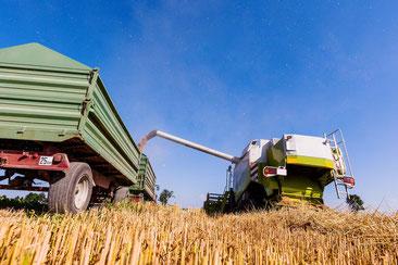 Milte landwirtschaftliche Maschinen und Anlagentechnik