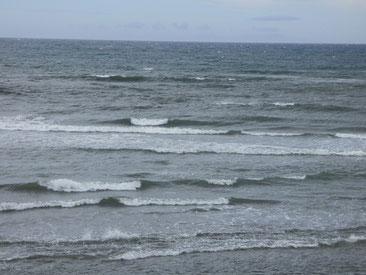 1時間後には風が強く冬っぽいコンディションに・・