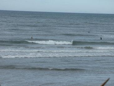 昨日までのうねりは消え、北ウネリに一気に,パワーダウンな波でした。