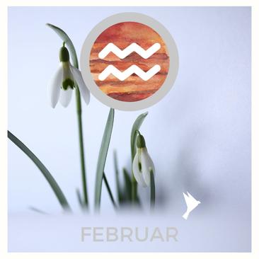 Der Stillstand - Jahreskreisblog im Jänner von Eva Hochstrasser