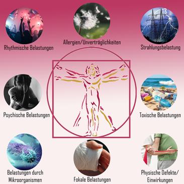Abbildung aller Belastungen welche das natürliche Vitalfeld des Menschen negativ beeinflussen können. Darunter fallen Allergien und Unverträglichkeiten, Strahlungsbelastung, Toxische Belastungen, Physische Defekte und Einwirkungen, Fokale Belastungen.