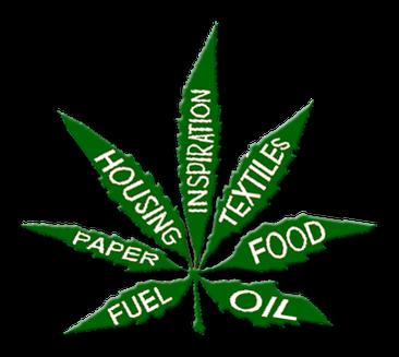 Hanfblatt, Hanf, Nutzhanf Verwendung Papier, Öl, Nahrung, Textilien, Medizin