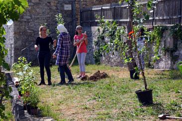 Zusammen einen Garten bewirtschaften - neue Freundschaften entstehen