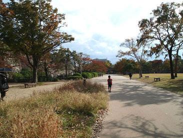 大阪城 西の丸庭園内