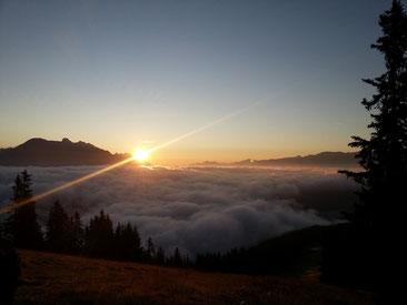 Sonnenaufgang- Tourismusberatung Pilz