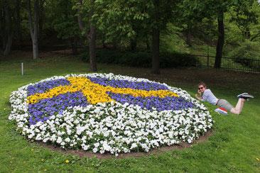 Schweden ist für Raphaela Polk zu einer zweiten Heimat geworden