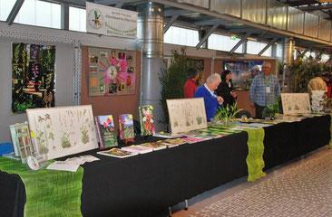 Exposition d'orchidées exotiques Périgueux 2011h