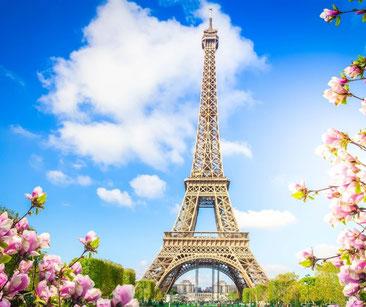 Tour Eiffel avec cerisiers en fleurs par une belle journée ensoleillée.