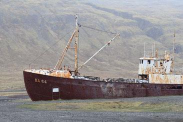 Schiffswrack am Strand des Patreksfjords - Exklusive Islandsrundreise von My own Travel ©My own Travel