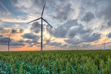 テキサスの風車群 Drew Kolb  / CC BY-NC 2.0