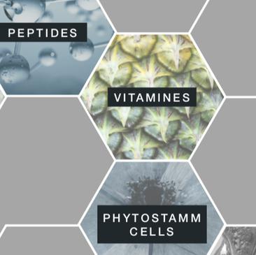 Beauty Hills, Kosmetik, Vitamine, Antioxidantien, Freie Radikale, intrinsische Hautalterung, extrinsische Hautalterung, Provitamine, Anti-Aging