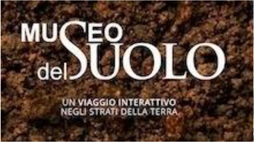 Campania Musei Integrati