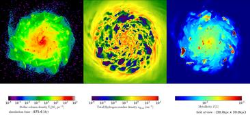 Simulation einer Scheibengalaxie - Draufsicht. Von links nach rechts ist die Verteilung der Sterne, des Gases und der schweren Elemente in der Galaxie dargestellt. Rechnungen von H. Braun und C. Behrens, Institut für Astrophysik, Universität Göttingen